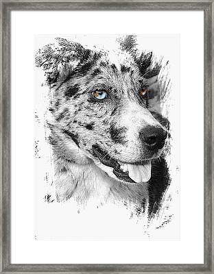 Eyes Framed Print
