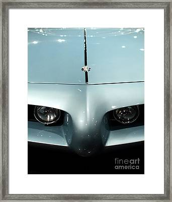 Eyes Of A Bat Framed Print by Wingsdomain Art and Photography