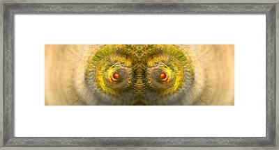 Eyes Of The Garden-1 Framed Print