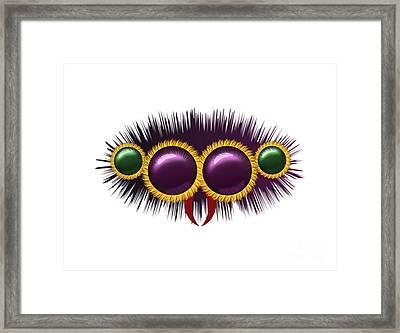 Eyes Of The Huge Hairy Spider Framed Print