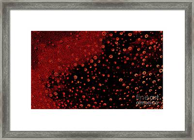 Eyes Of The Universe Framed Print by Rick Maxwell