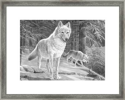 Eye's On The Prize Framed Print