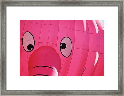 Eyes On You Framed Print by Marie Leslie