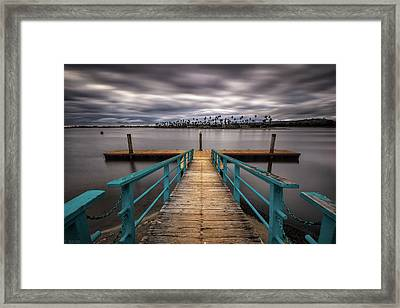 Eyes Wide Open Framed Print