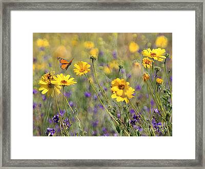 f5 Framed Print by Tom Griffithe