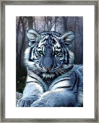 Fabled Framed Print by Julie L Hoddinott