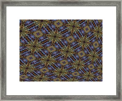 Fabric Fantacy Framed Print by Ricky Kendall