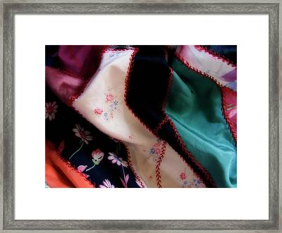 Fabric Of Life Framed Print by Bonnie Bruno