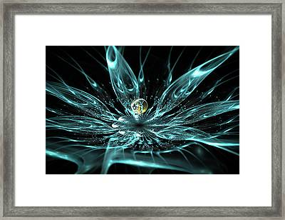 Fabulous Flower With A Dewdrop At Night Framed Print