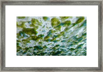 Fabulous In Foam Framed Print