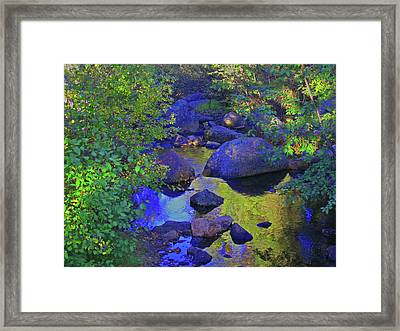 Framed Print featuring the photograph Face In The Creek by Tammy Sutherland