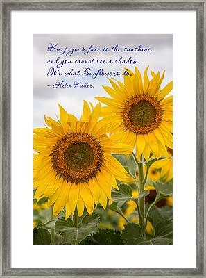 Face The Sunshine Framed Print by Dale Kincaid
