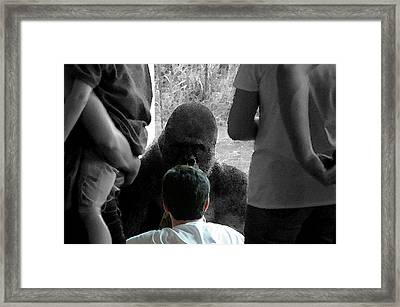 Face To Face Framed Print by Don Prioleau