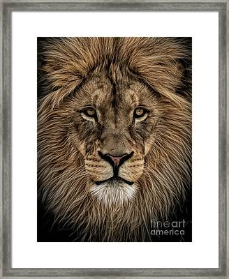 Facing Courage Framed Print