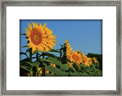 Framed Print featuring the photograph Facing East by Chris Berry