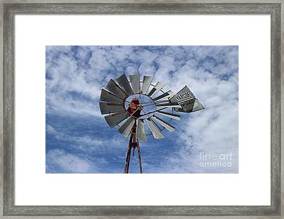 Framed Print featuring the photograph Facing Into The Breeze by Stephen Mitchell