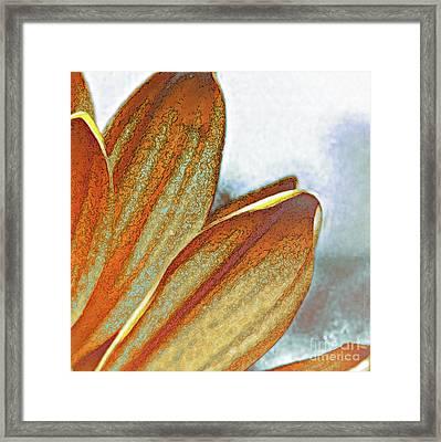 Fade 3 Framed Print
