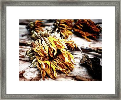 Faded Away Framed Print