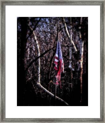 Framed Print featuring the photograph Faded Glory by Alan Raasch