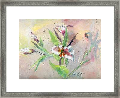 Faded Lilies Framed Print by Arline Wagner