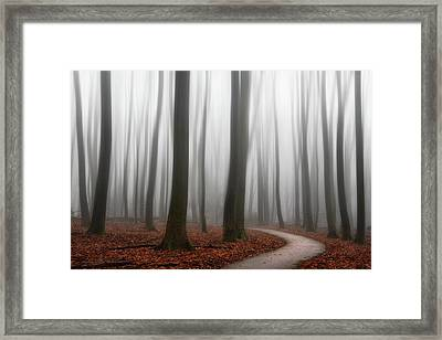 Faded Framed Print by Martin Podt