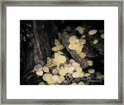 Framed Print featuring the photograph Faded Pot Of Gold by The Forests Edge Photography - Diane Sandoval