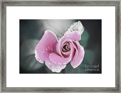 Faded Romance Framed Print