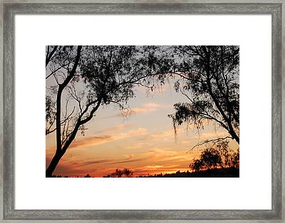 Faded Technicolor Framed Print by Jean Booth