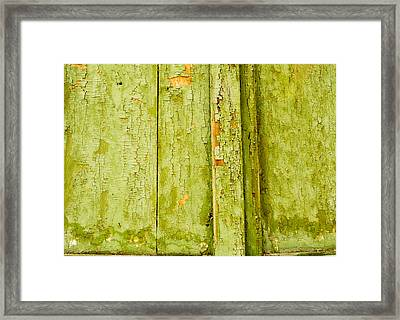 Framed Print featuring the photograph Fading Old Paint by John Williams