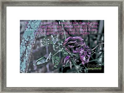 Fading Rose Framed Print