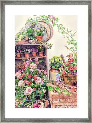 Fading Summer Framed Print