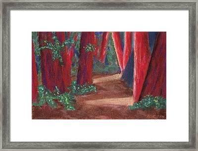 Fairfax Redwoods Framed Print
