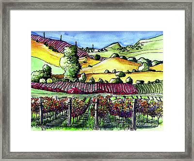 Fairfield Vineyards Framed Print