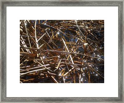 Fairies On The Marsh Framed Print