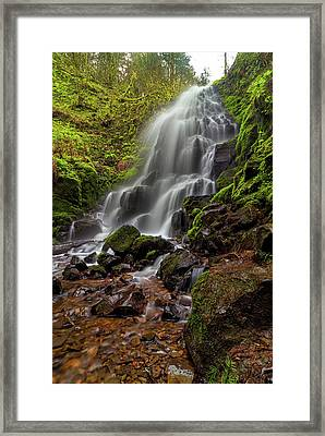 Fairy Falls In Columbia Gorge Framed Print by David Gn