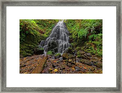 Framed Print featuring the photograph Fairy Falls by Jonathan Davison