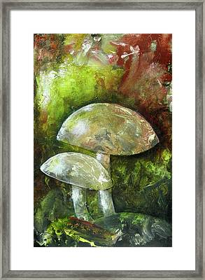 Fairy Kingdom Toadstool Framed Print