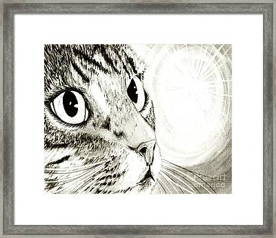 Framed Print featuring the drawing Fairy Light Tabby Cat Drawing by Carrie Hawks