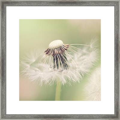 Fairy Parasol Framed Print