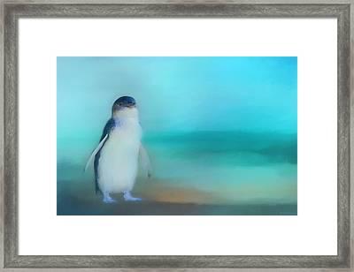 Fairy Penguin Western Australia Framed Print by Michelle Wrighton