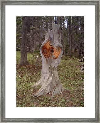 Fairy Portal Framed Print by Lara Henderson