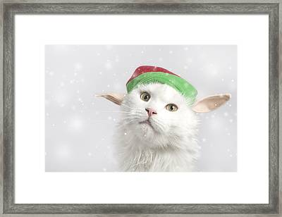 Fairy Vlinder Framed Print by Cat'chy Images