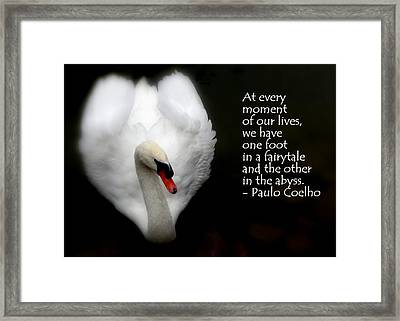 Framed Print featuring the photograph Fairytale Swan by Lainie Wrightson