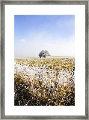 Framed Print featuring the photograph Fairytale Winter In Fingal by Jorgo Photography - Wall Art Gallery
