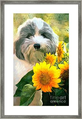Faithful Floyd Framed Print