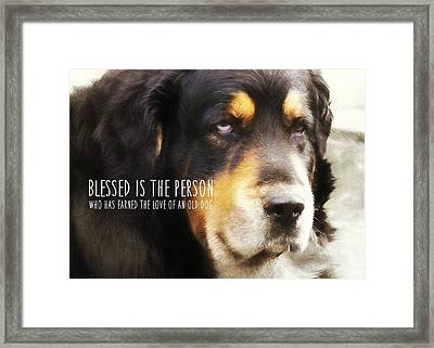 Faithful Quote Framed Print by JAMART Photography
