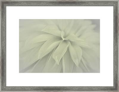 Faithful Whisper Framed Print by The Art Of Marilyn Ridoutt-Greene