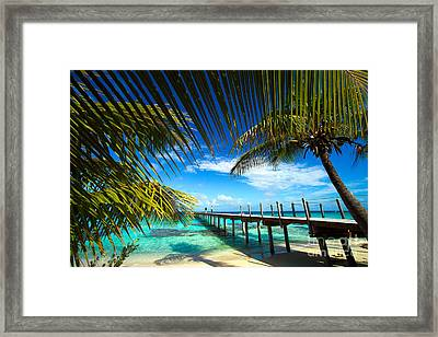 Fakarava Atoll Framed Print by David Cornwell/First Light Pictures, Inc - Printscapes
