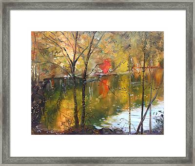Fall 2009 Framed Print