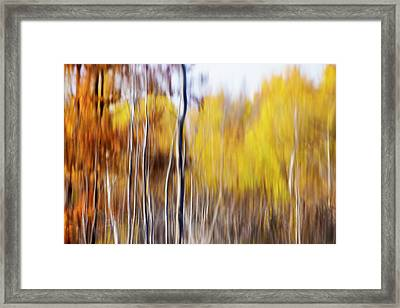 Framed Print featuring the photograph Fall Abstract by Mircea Costina Photography
